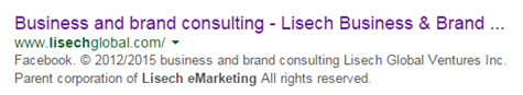 Google snippet for Lisechglobal SEO